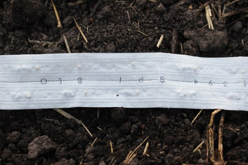 Seed-Tape